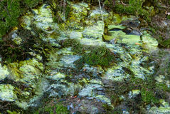 Rocks with moss and lichen at Borghagen Royalty Free Stock Image