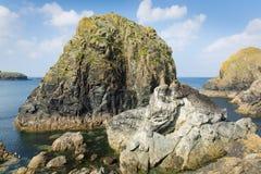 Rocks at Mullion Cove Cornwall UK the Lizard peninsula Mounts Bay near Helston Royalty Free Stock Photo