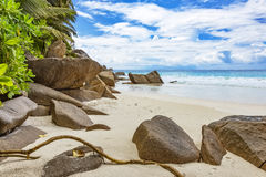 Rocks on natural tropical beach Stock Photos