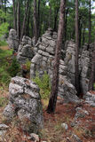 Rocks nd forest Royalty Free Stock Images