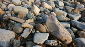 Rocks near the atlantic ocean. Rocks located near the ocean at nova scotia canada royalty free stock photography