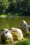 The rocks near the water. A few stones on the river Bank Royalty Free Stock Photos