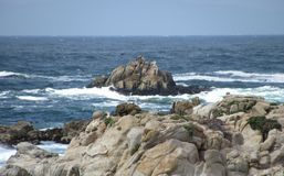 Rocks and the ocean are beautiful at Monterrey Bay. Royalty Free Stock Photo