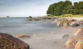 Rocks in Ocean with Trees Royalty Free Stock Photos