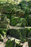 Rocks overgrown with moss Royalty Free Stock Images