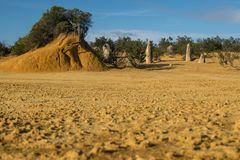 Pinnacle desert in Australia royalty free stock image