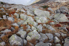 Rocks at Plan de L'Auguille station at altitude 2317 meters in Chamonix Stock Image