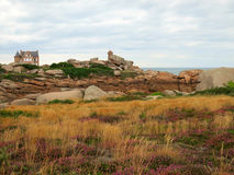 Rocks and plants at Cote de Granite Rose, Brittany Royalty Free Stock Image