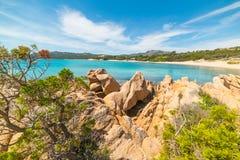 Rocks and plants in La Celvia beach Stock Photo