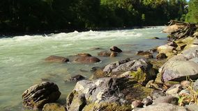 Rocks in powerful river rapids, mountain stream, wildlife. Stock footage stock video