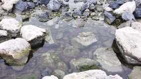 Rocks and puddle on the seashore. In nature stock video