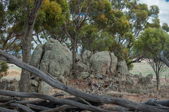 The Rocks in the Reserve Royalty Free Stock Photography