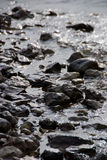 Rocks in the river bed. Closeup of rocks near the riverside Stock Photos