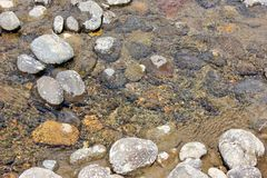 Rocks in a river bed. Rocks in a flowing river bed, background Royalty Free Stock Photos