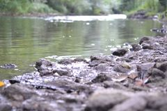 Rocks on river. Little river with some rocks, look nice in spring Royalty Free Stock Photography