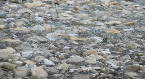Rocks in the river. Smooth, round and soft stones in the river Royalty Free Stock Photography