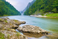 Rocks on riverbank in the mountains. The Dunajec R Royalty Free Stock Images