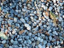 Rocks. Rocky landscape with some leafy debris Royalty Free Stock Photos