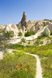 Rocks in Rose Valley of Goreme National Park in Central Anatolia, Stock Photo