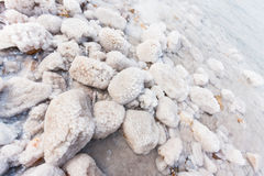 Rocks with salt on the Dead Sea Royalty Free Stock Images