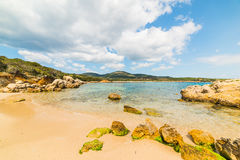 Rocks and sand in Alghero shoreline Stock Photography