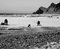 Rocks, sand, people, ocean. People playing in the sandy beach by rounded rocks at the Pacific Ocean royalty free stock images