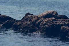 Rocks in the sea, Crete Greece royalty free stock images