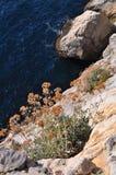 Rocks in the sea Stock Image