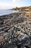 Rocks on sea shore Royalty Free Stock Photo