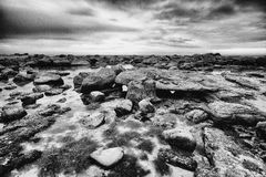 Rocks in sea water Stock Images