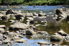 River Wharfe, Yorkshire Dales National Park, England. Rocks in the shallows of the River Wharfe on the Bolton Abbey Estate the county of Yorkshire, England. An Stock Photos
