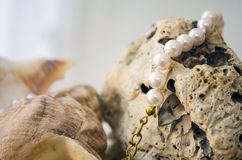 Rocks, shells and pearls Royalty Free Stock Image