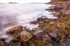 Rocks on the shore of the White Sea Stock Photos