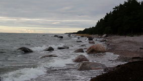 Rocks on the shoreline and the forest at the side Stock Image