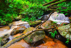 Rocks and a small waterfall in the forest. Rocks and a small waterfall in the forest during the rainy season Royalty Free Stock Photos