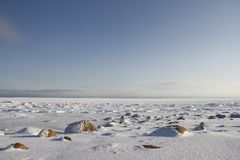 Rocks in the snow under a blue sky in the arctic, north of Arviat. Nunavut, Canada Stock Photography