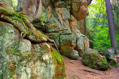 Rocks in Stolowe Mountains in Silesia Stock Images