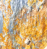 Rocks stone and red  gneiss in the wall of morocco. Rocks stone and red orange gneiss in the wall of morocco Stock Images