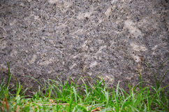 Free Rocks Stone Wall And Green Grass Texture Background Stock Photo - 90087750