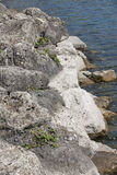 Rocks and stones as background Royalty Free Stock Image