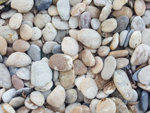 Rocks and Stones as a Background texture. Stock Image