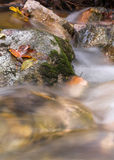 Rocks in a stream. Photo of moss-covered rocks in a small stream Stock Images