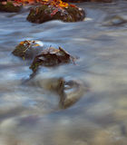 Rocks in a stream Royalty Free Stock Photos