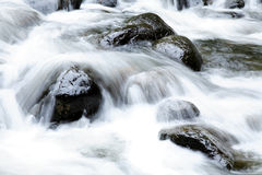 Rocks in stream Stock Photography