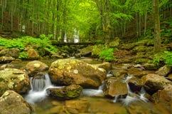 Rocks in the stream Stock Photo