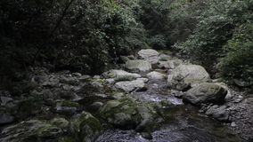 The rocks and streams stock video