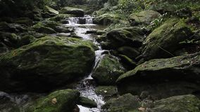 Rocks and streams stock video