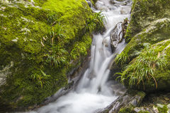 Rocks and streams Royalty Free Stock Photography