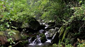 The rocks and streams stock footage