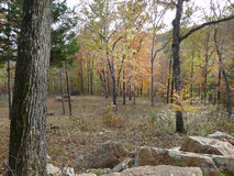 Rocks and trees of Missouri in autumn Royalty Free Stock Images